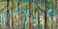 Woodland Fine-Art Print