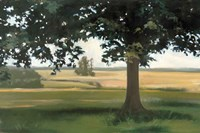 Hidden Pasture Fine-Art Print