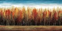 Deep Forest Fine-Art Print