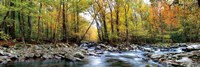 Porters Creek Fine-Art Print