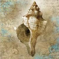 Aquatic Allure Fine-Art Print