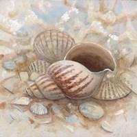 Beach Prize I Fine-Art Print
