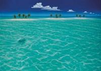 Turtle Crossing Fine-Art Print