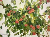 Apple Tree Fine-Art Print
