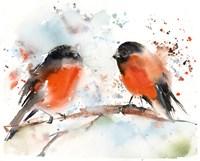 Robin Pals II Fine-Art Print