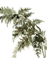Forest Greenery II Fine-Art Print