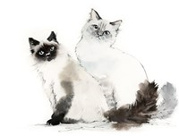 Cat and Caboodle Fine-Art Print