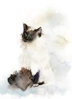 Feline Fine Fine-Art Print
