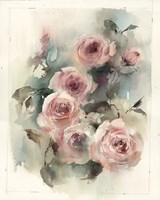 Blush Roses II Fine-Art Print