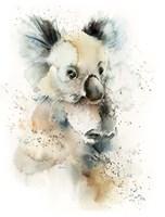 Cool Koala Fine-Art Print