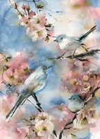 Blue Bird in Cherry Blossoms Fine-Art Print