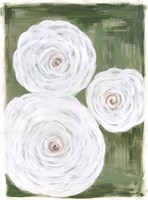 Big White Flowers I Fine-Art Print