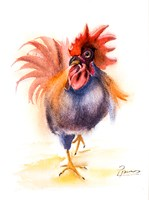 Rooster Fine-Art Print