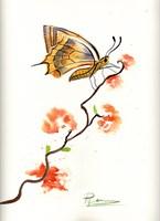 Butterfly III Fine-Art Print
