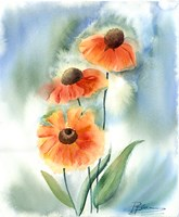 Orange Flowers Fine-Art Print