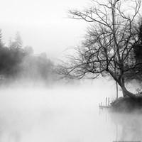 Fog on the Lake Fine-Art Print