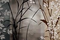 Silver Whispers II Fine-Art Print