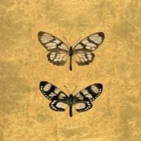 Pair of Butterflies on Gold Fine-Art Print