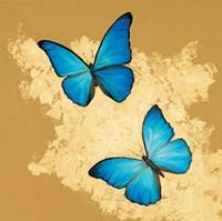 Cerulean Butterfly I Fine-Art Print