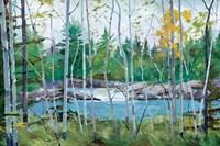 Oxtounge Rapids Fine-Art Print