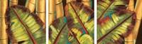 Tropical Pastel Fine-Art Print