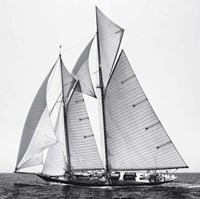 Adrift II Fine-Art Print