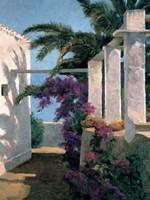 Bougainvillea & Palm Trees Fine-Art Print