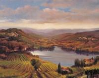 Vineyard View I Fine-Art Print