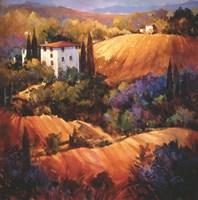 Evening Glow Tuscany Fine-Art Print