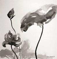 Lotus Flowers II Fine-Art Print