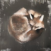 Sleeping Fox No. 11 Fine-Art Print