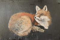 Starry, Starry Night Fox Fine-Art Print