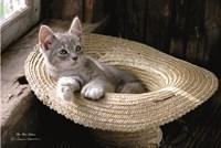 The Hat Kitten Fine-Art Print
