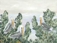 The Pelican Perch Fine-Art Print