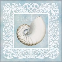 Sandy Shells Blue on Blue Nautilus Fine-Art Print