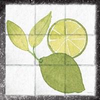 Citrus Tile VII Black Border Fine-Art Print