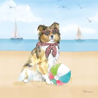Summer Paws V No Words Fine-Art Print