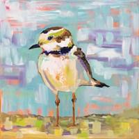 Coastal Plover II Fine-Art Print