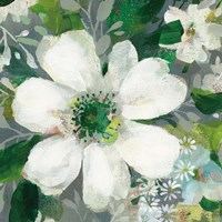 Anemone and Friends V Fine-Art Print