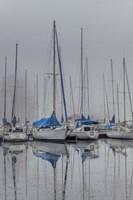Sailing Boats Fine-Art Print