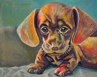 Puppy Face Fine-Art Print