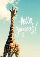 Hello Gorgeous Giraffe Fine-Art Print