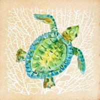 Sealife Turtle Fine-Art Print