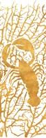 Sealife on Gold II Fine-Art Print