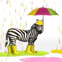 Raindrops Safari Zebra Fine-Art Print