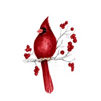 Winter Cardinal in Red II Fine-Art Print