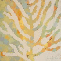 Coral Vision II Fine-Art Print