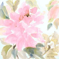 Early Pink Blooms II Fine-Art Print