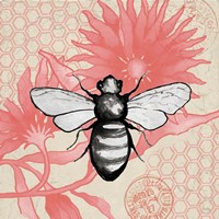 Bee on Pink Flower Square Fine-Art Print