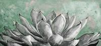 Gray Agave on Green Fine-Art Print